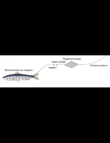 Полиангистро Focus - Focus - Вързани куки за морски риболов - 2